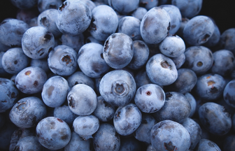 บลูเบอร์รี่ กี่แคล กินอย่างไรให้ได้ประโยชน์ต่อสุขภาพมากที่สุด